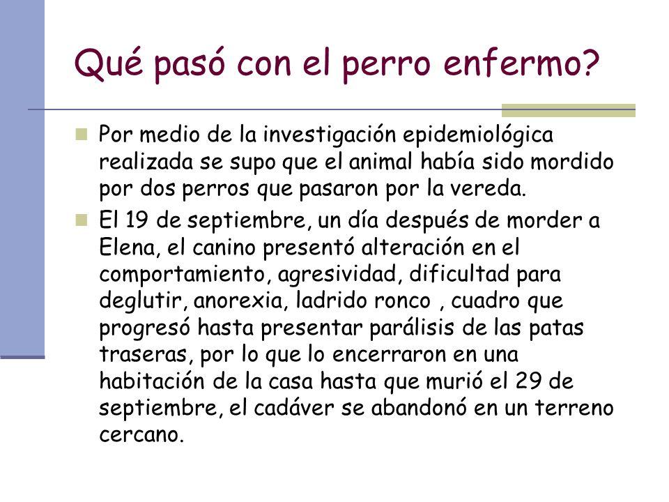Qué pasó con el perro enfermo? Por medio de la investigación epidemiológica realizada se supo que el animal había sido mordido por dos perros que pasa