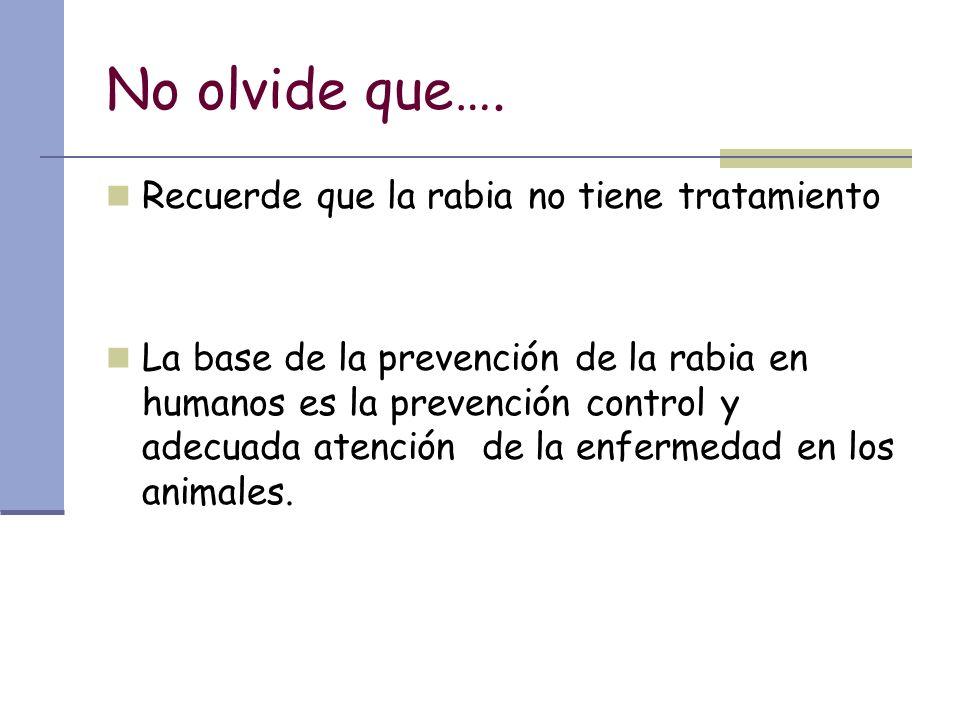 No olvide que…. Recuerde que la rabia no tiene tratamiento La base de la prevención de la rabia en humanos es la prevención control y adecuada atenció