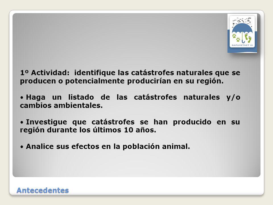 Antecedentes 1º Actividad: identifique las catástrofes naturales que se producen o potencialmente producirían en su región.