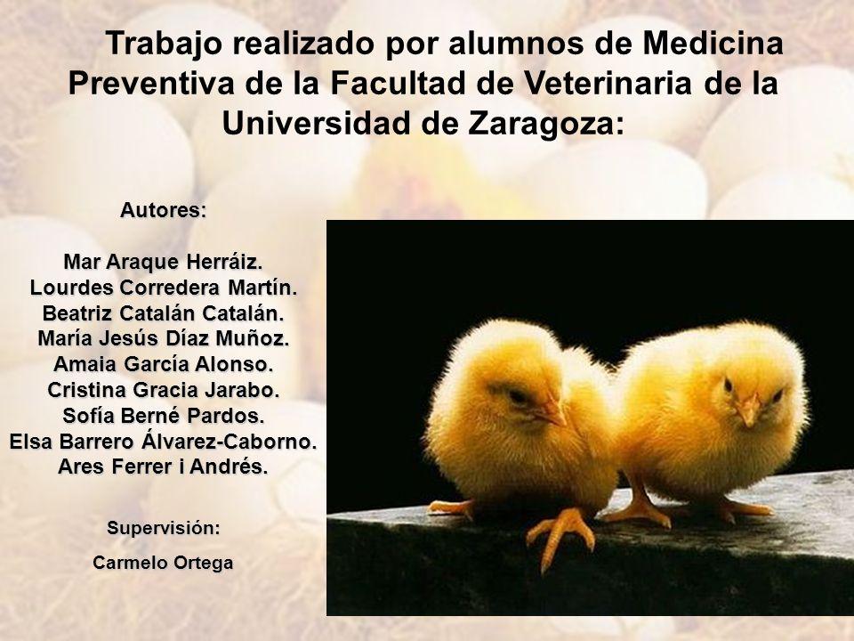 Trabajo realizado por alumnos de Medicina Preventiva de la Facultad de Veterinaria de la Universidad de Zaragoza: Autores: Mar Araque Herráiz. Lourdes