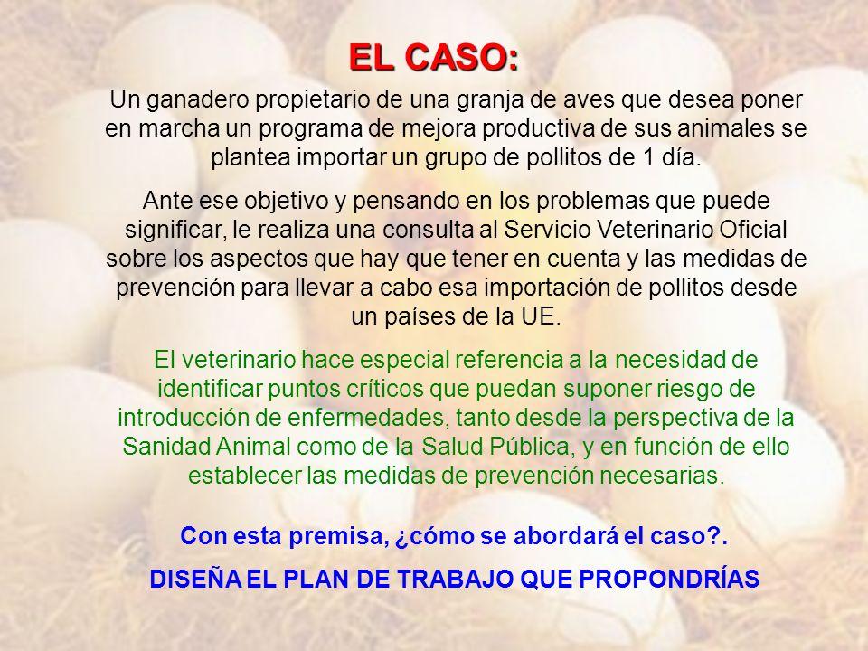 EL CASO: Un ganadero propietario de una granja de aves que desea poner en marcha un programa de mejora productiva de sus animales se plantea importar