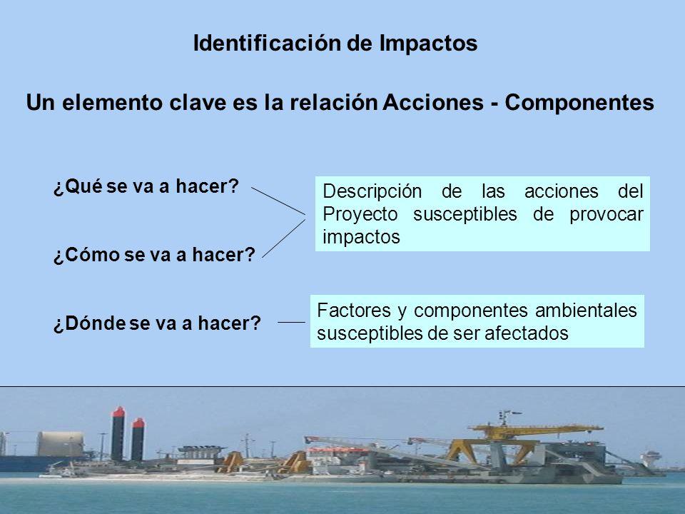 Un elemento clave es la relación Acciones - Componentes ¿Qué se va a hacer? ¿Cómo se va a hacer? ¿Dónde se va a hacer? Descripción de las acciones del