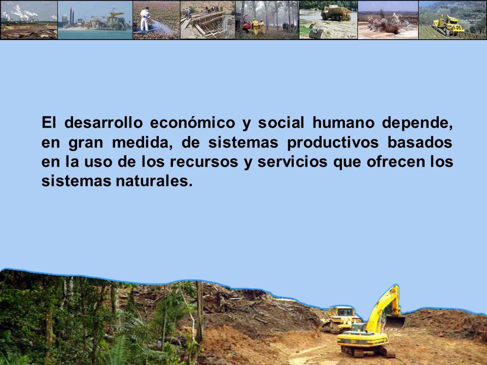 El desarrollo económico y social humano depende, en gran medida, de sistemas productivos basados en la uso de los recursos y servicios que ofrecen los