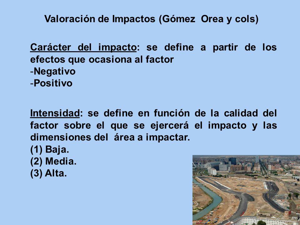 Carácter del impacto: se define a partir de los efectos que ocasiona al factor -Negativo -Positivo Intensidad: se define en función de la calidad del