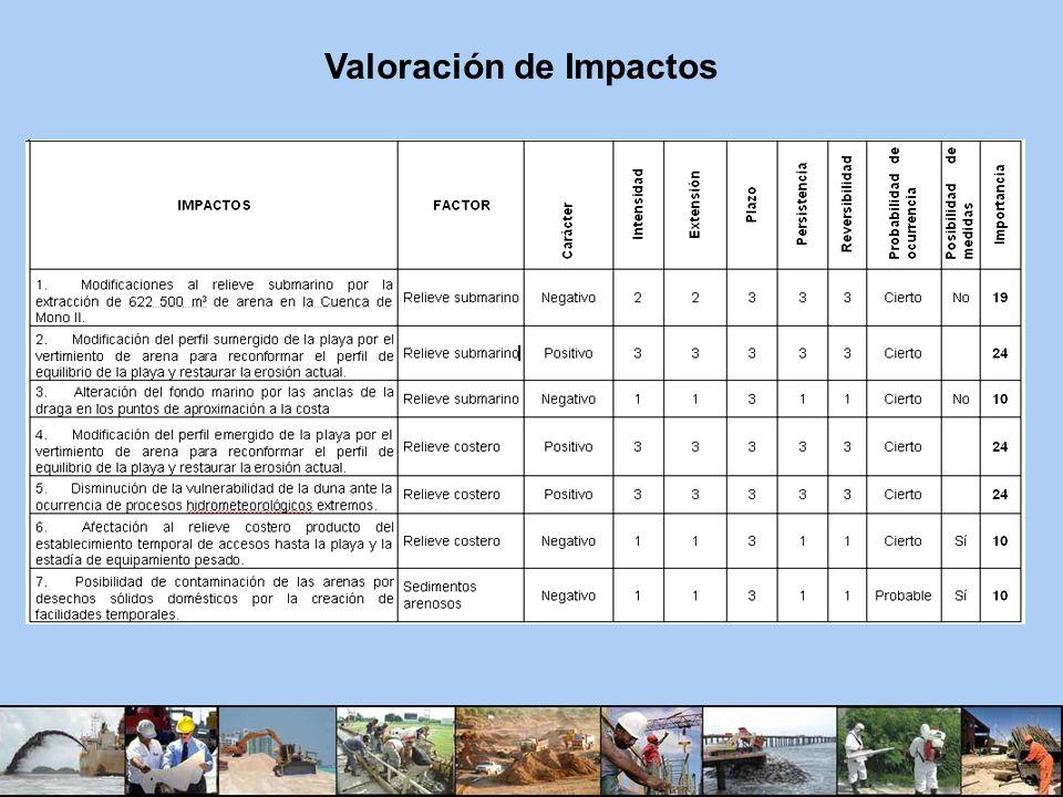 Valoración de Impactos