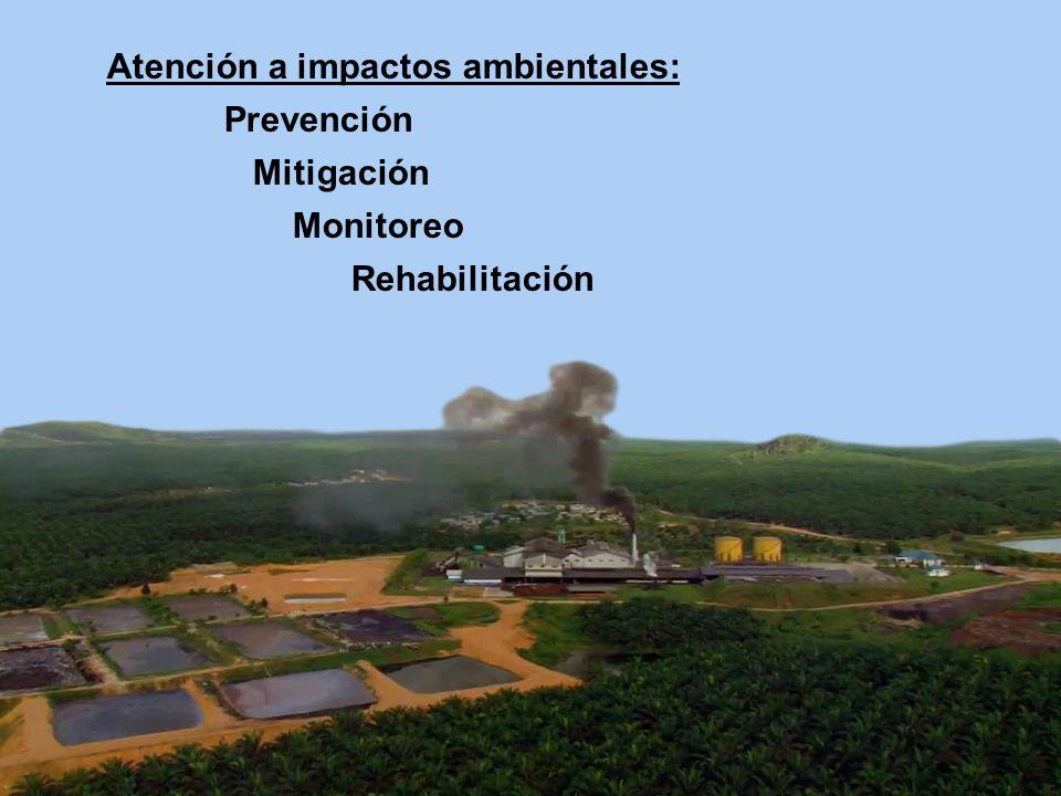 Atención a impactos ambientales: Prevención Mitigación Monitoreo Rehabilitación