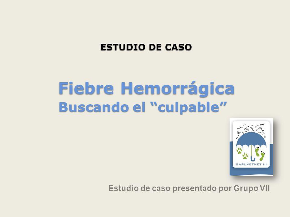 ESTUDIO DE CASO Estudio de caso presentado por Grupo VII Fiebre Hemorrágica Buscando el culpable Fiebre Hemorrágica Buscando el culpable