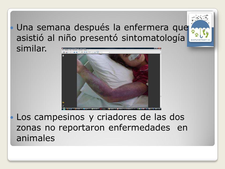 Una semana después la enfermera que asistió al niño presentó sintomatología similar. Los campesinos y criadores de las dos zonas no reportaron enferme
