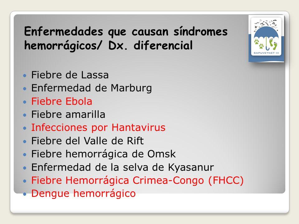 Enfermedades que causan síndromes hemorrágicos/ Dx. diferencial Fiebre de Lassa Enfermedad de Marburg Fiebre Ebola Fiebre amarilla Infecciones por Han