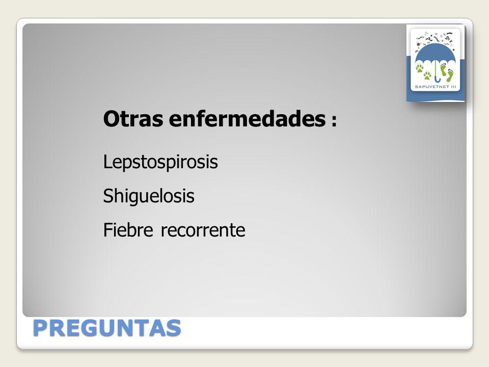 PREGUNTAS Otras enfermedades : Lepstospirosis Shiguelosis Fiebre recorrente
