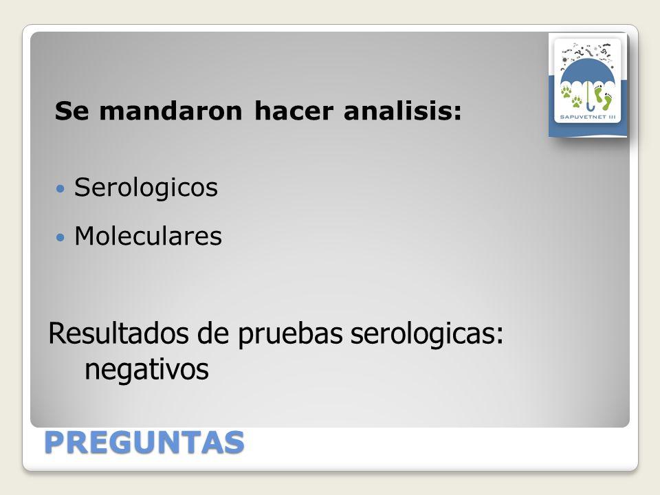 PREGUNTAS Se mandaron hacer analisis: Serologicos Moleculares Resultados de pruebas serologicas: negativos