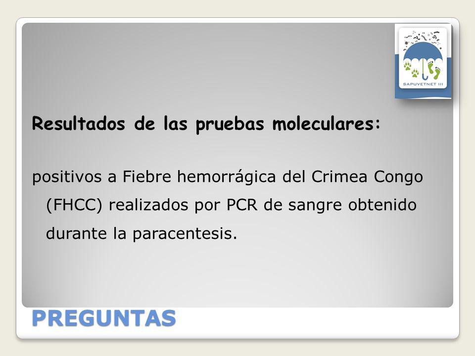 PREGUNTAS Resultados de las pruebas moleculares: positivos a Fiebre hemorrágica del Crimea Congo (FHCC) realizados por PCR de sangre obtenido durante