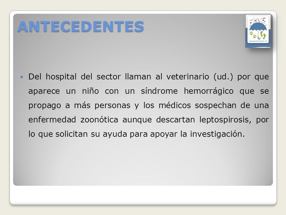ANTECEDENTES Del hospital del sector llaman al veterinario (ud.) por que aparece un niño con un síndrome hemorrágico que se propago a más personas y l