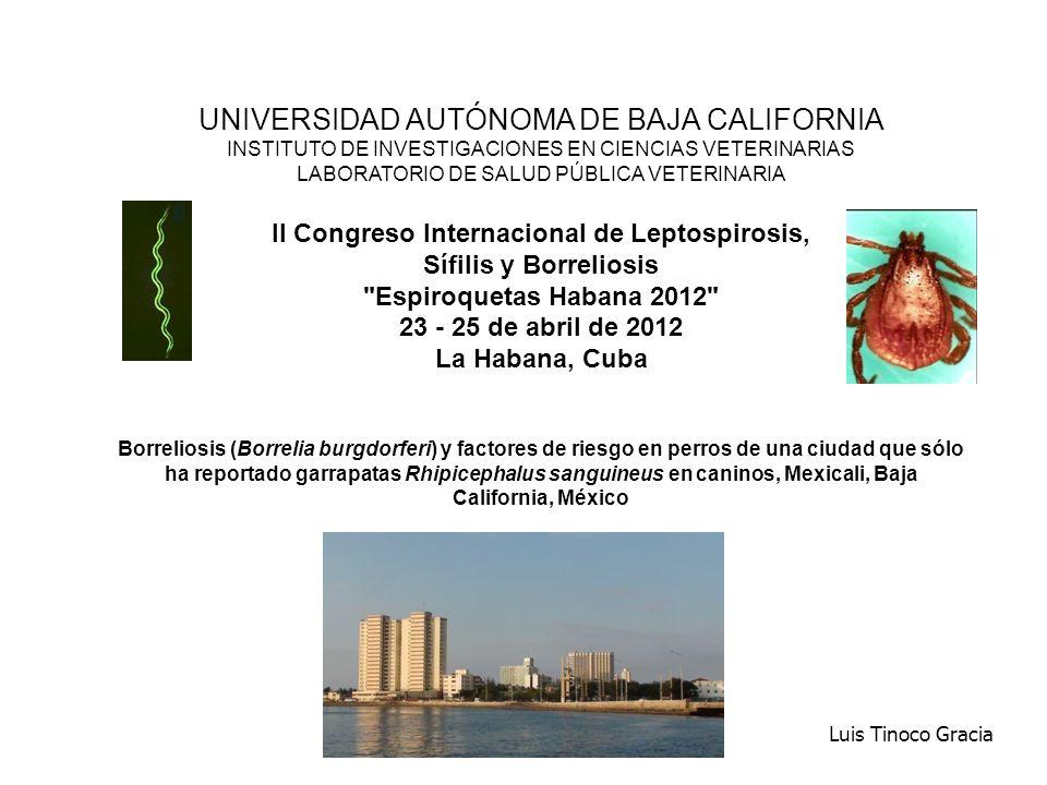EVIDENCIA MOLECULAR DE Borrelia burgdorferi - PCR M1234567PNM Mexicali, B.C., 22 de octubre de 2007 PCR de FLA en tejidos de perros seropositivos 256 pb