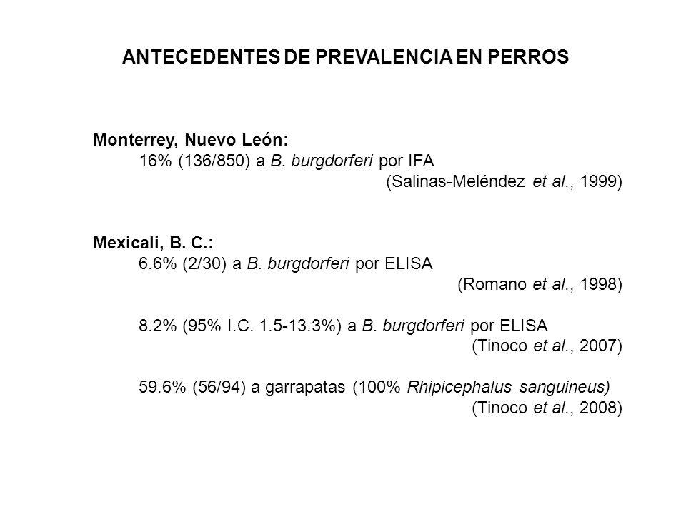 ANTECEDENTES DE PREVALENCIA EN HUMANOS Estados Unidos: Actualmente: 200,000 (CDC) República Mexicana: Por ELISA y Western blot Distrito Federal:3.4% Noreste de la Rep.