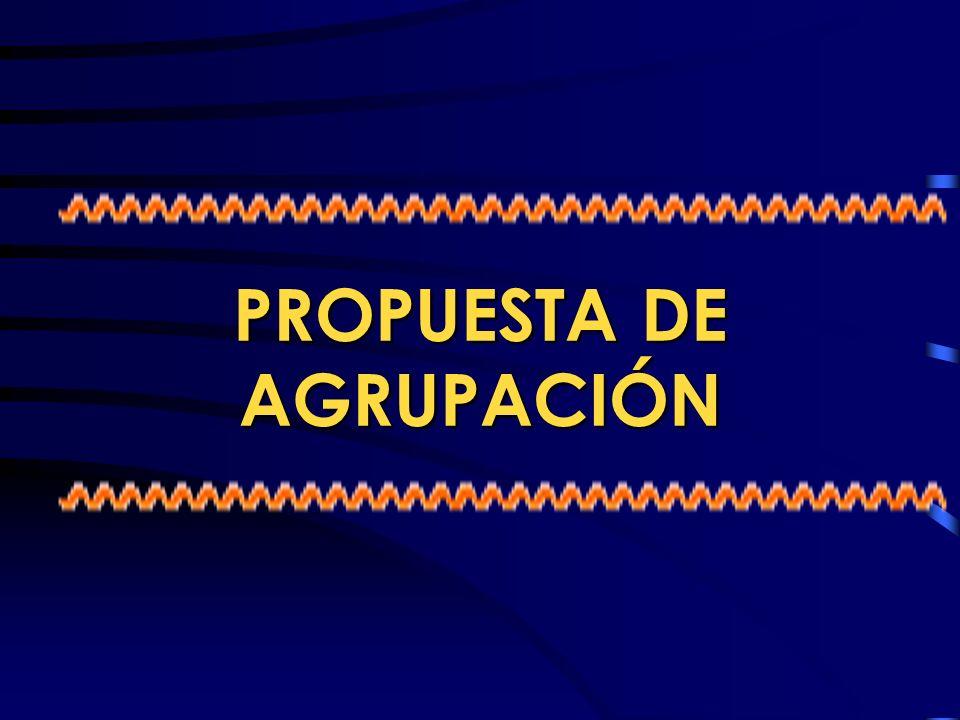 PROPUESTA DE AGRUPACIÓN