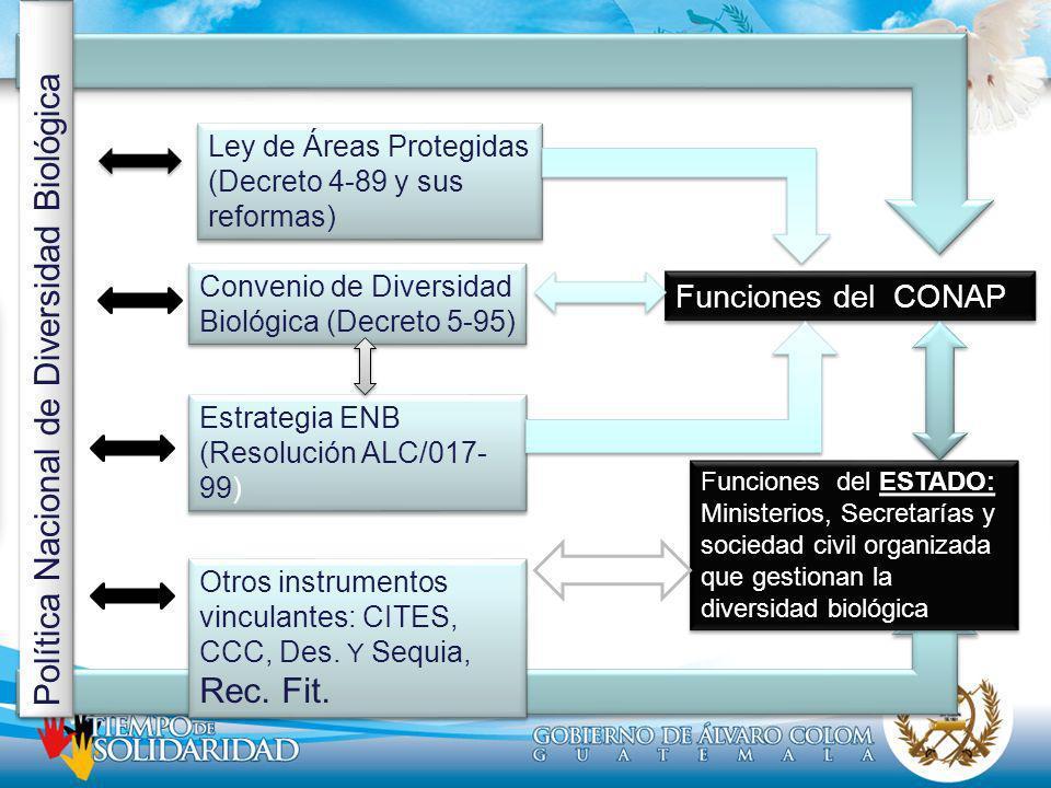 Ley de Áreas Protegidas (Decreto 4-89 y sus reformas) Estrategia ENB (Resolución ALC/017- 99) Convenio de Diversidad Biológica (Decreto 5-95) Política