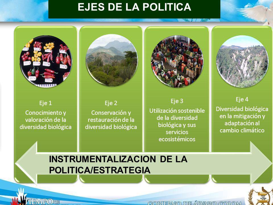ENFOQUE DE LAS LÍNEAS DE POLÍTICA Eje 1 Conocimiento y valoración de la diversidad biológica Eje 2 Conservación y restauración de la diversidad biológ