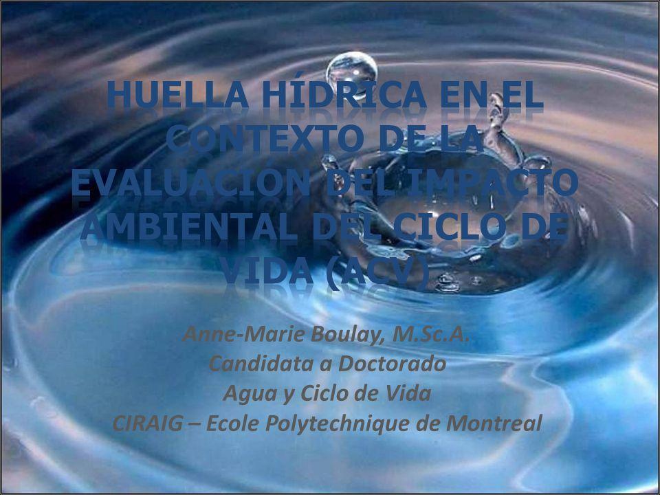 Anne-Marie Boulay, M.Sc.A. Candidata a Doctorado Agua y Ciclo de Vida CIRAIG – Ecole Polytechnique de Montreal