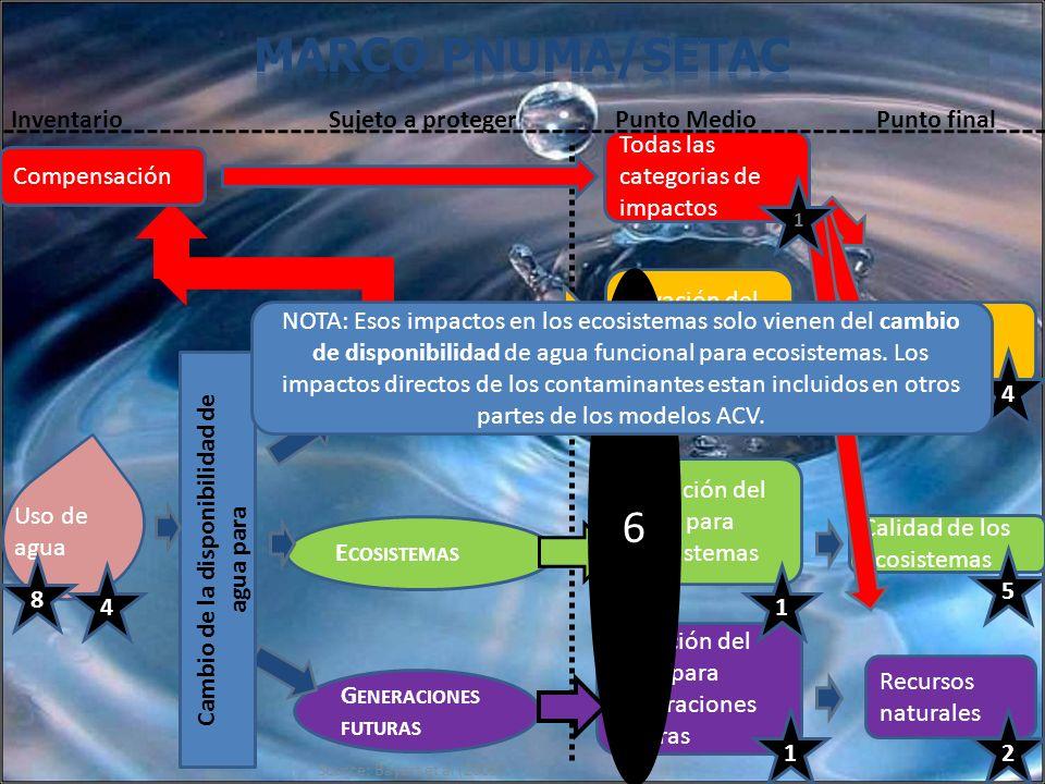 Source: Bayart et al (2009) G ENERACIONES FUTURAS Privación del agua para generaciones futuras E COSISTEMAS Uso de agua Privación del agua para ecosis