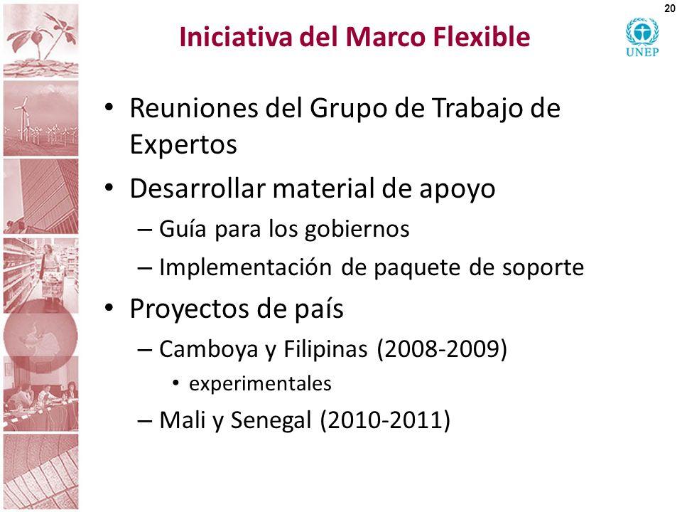 Iniciativa del Marco Flexible Reuniones del Grupo de Trabajo de Expertos Desarrollar material de apoyo – Guía para los gobiernos – Implementación de p