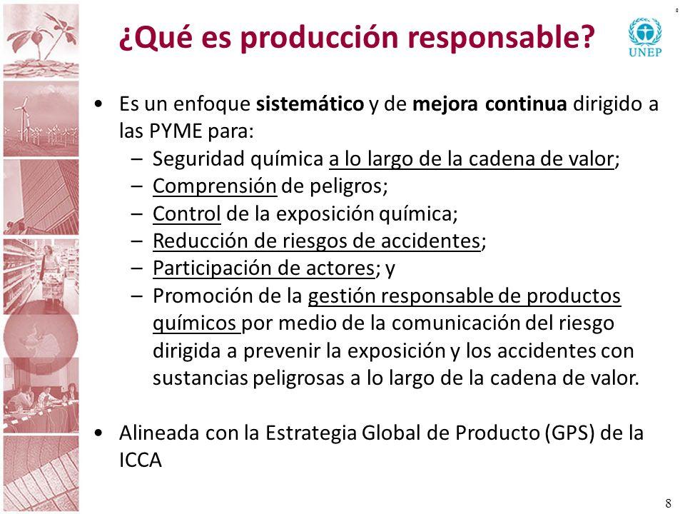 ¿Qué es producción responsable? 8 8 Es un enfoque sistemático y de mejora continua dirigido a las PYME para: –Seguridad química a lo largo de la caden