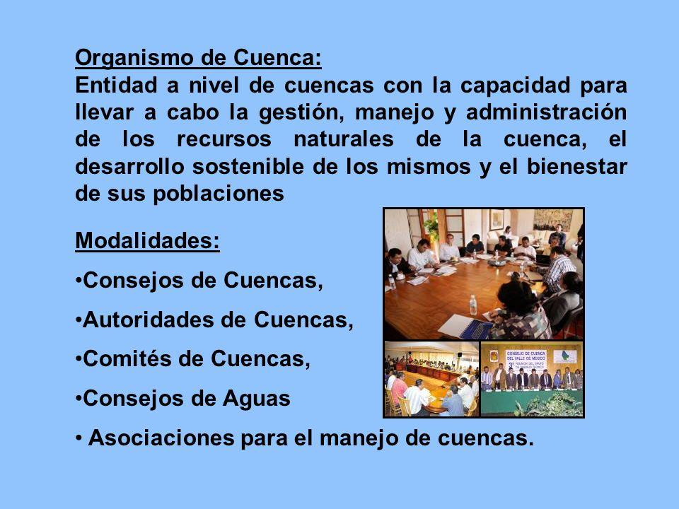 Organismo de Cuenca: Entidad a nivel de cuencas con la capacidad para llevar a cabo la gestión, manejo y administración de los recursos naturales de l