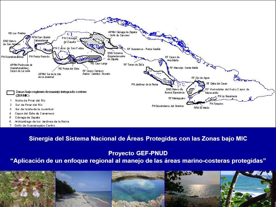 Sinergia del Sistema Nacional de Áreas Protegidas con las Zonas bajo MIC Proyecto GEF-PNUD Aplicación de un enfoque regional al manejo de las áreas ma