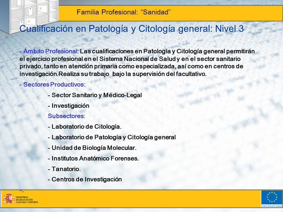 Cualificación en Patología y Citología general: Nivel 3 Familia Profesional: Sanidad - Ámbito Profesional: Las cualificaciones en Patología y Citologí