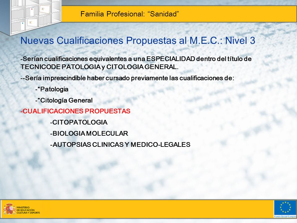 Nuevas Cualificaciones Propuestas al M.E.C.: Nivel 3 Familia Profesional: Sanidad -Serían cualificaciones equivalentes a una ESPECIALIDAD dentro del t