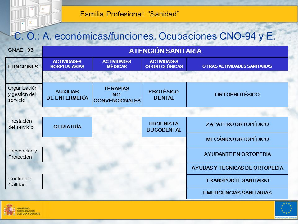 C.O.: A. económicas/funciones. Ocupaciones CNO-94 y E.