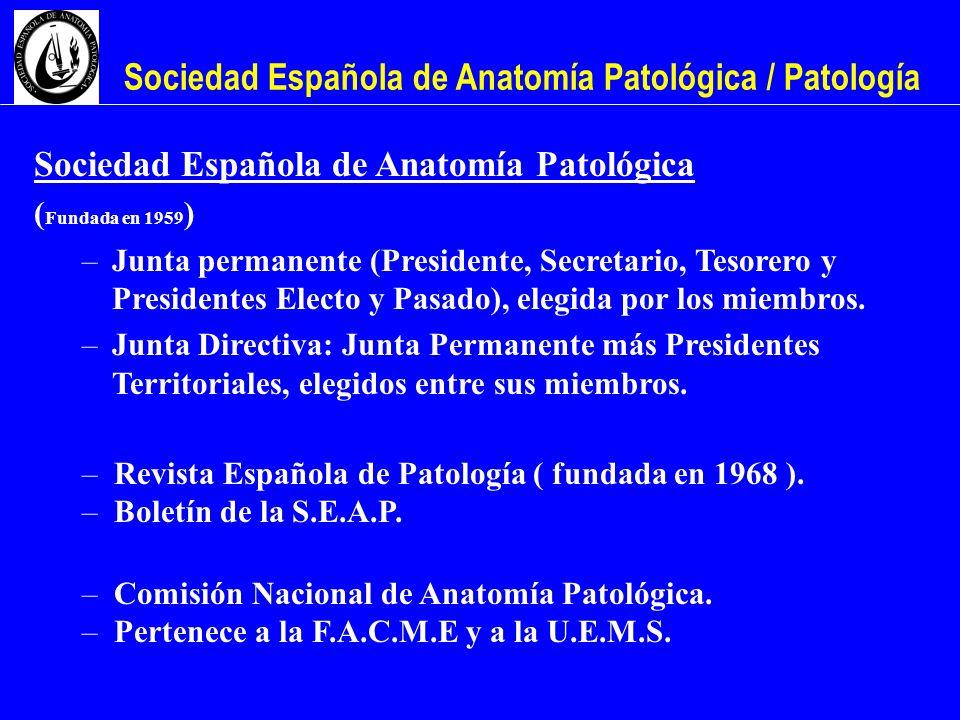 Sociedad Española de Anatomía Patológica / Patología Sociedad Española de Anatomía Patológica ( Fundada en 1959 ) –Junta permanente (Presidente, Secre