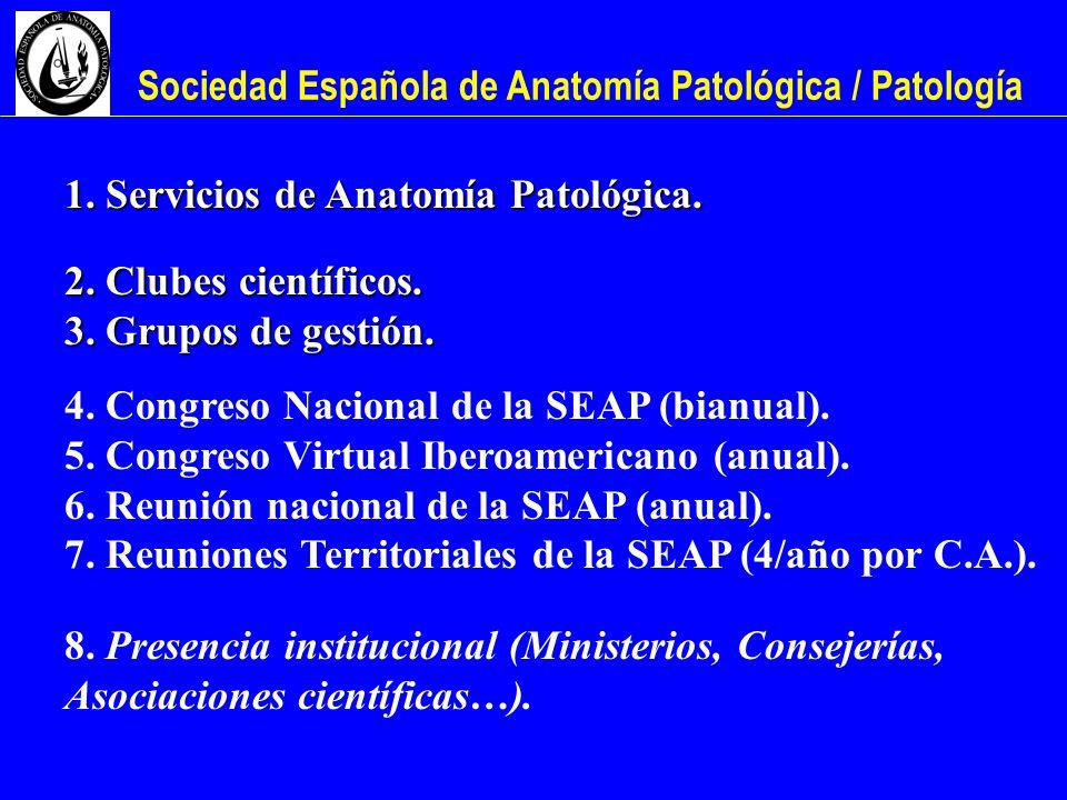 Sociedad Española de Anatomía Patológica / Patología 1. Servicios de Anatomía Patológica. 2. Clubes científicos. 3. Grupos de gestión. 4. Congreso Nac