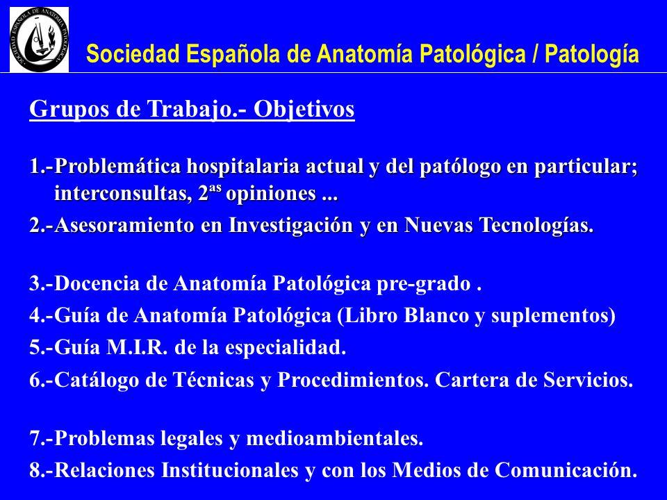 Sociedad Española de Anatomía Patológica / Patología Grupos de Trabajo.- Objetivos 1.-Problemática hospitalaria actual y del patólogo en particular; i