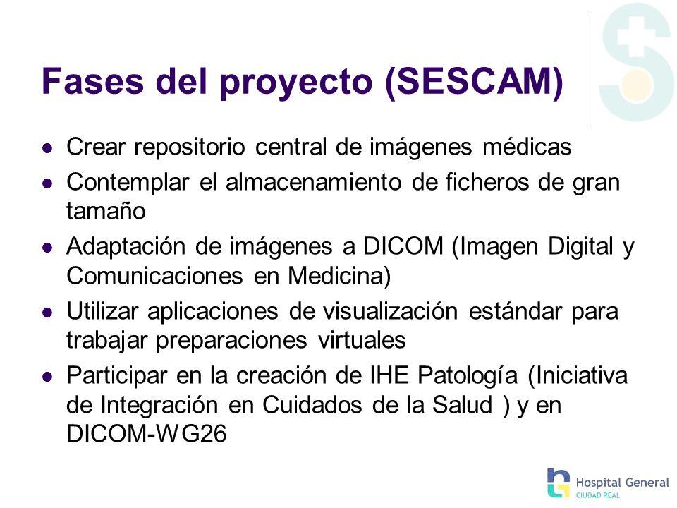 Fases del proyecto (SESCAM) Crear repositorio central de imágenes médicas Contemplar el almacenamiento de ficheros de gran tamaño Adaptación de imágen