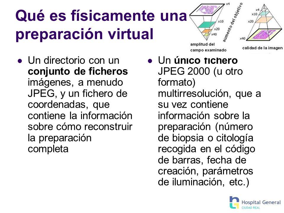 Qué es físicamente una preparación virtual Un directorio con un conjunto de ficheros imágenes, a menudo JPEG, y un fichero de coordenadas, que contien