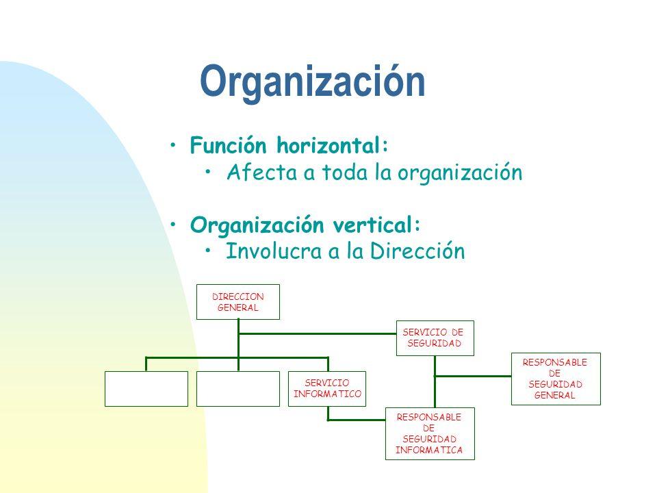 Función horizontal: Afecta a toda la organización Organización vertical: Involucra a la Dirección Organización DIRECCION GENERAL SERVICIO INFORMATICO
