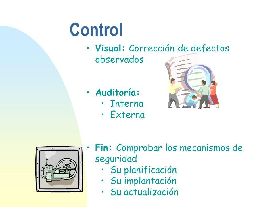 Visual: Corrección de defectos observados Auditoría: Interna Externa Fin: Comprobar los mecanismos de seguridad Su planificación Su implantación Su ac