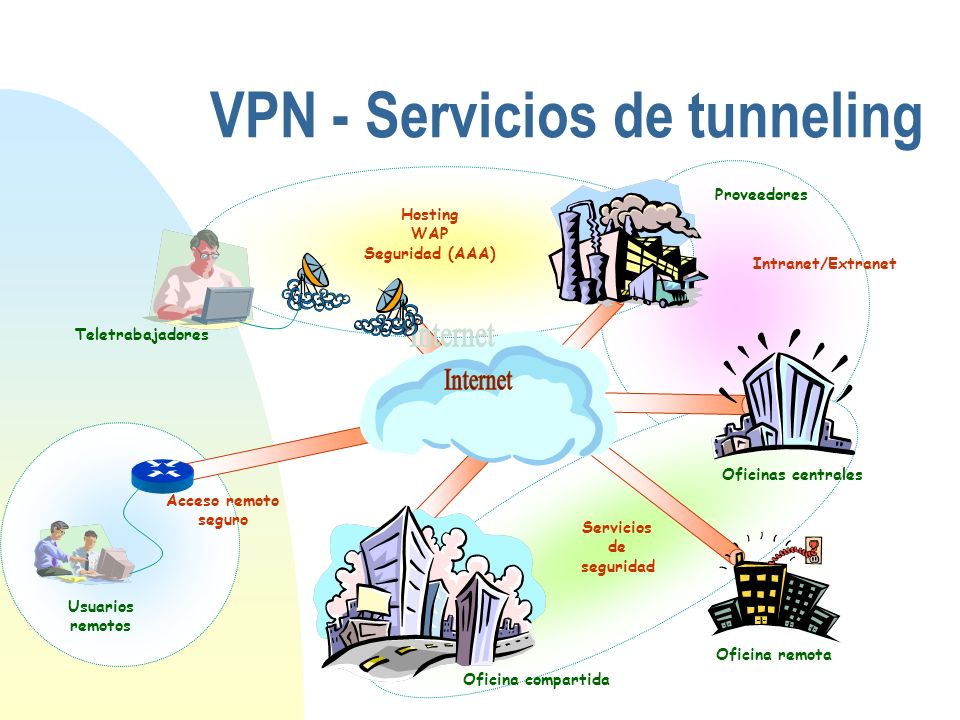 Acceso remoto seguro Intranet/Extranet Servicios de seguridad Hosting WAP Seguridad (AAA) VPN - Servicios de tunneling Usuarios remotos Teletrabajador