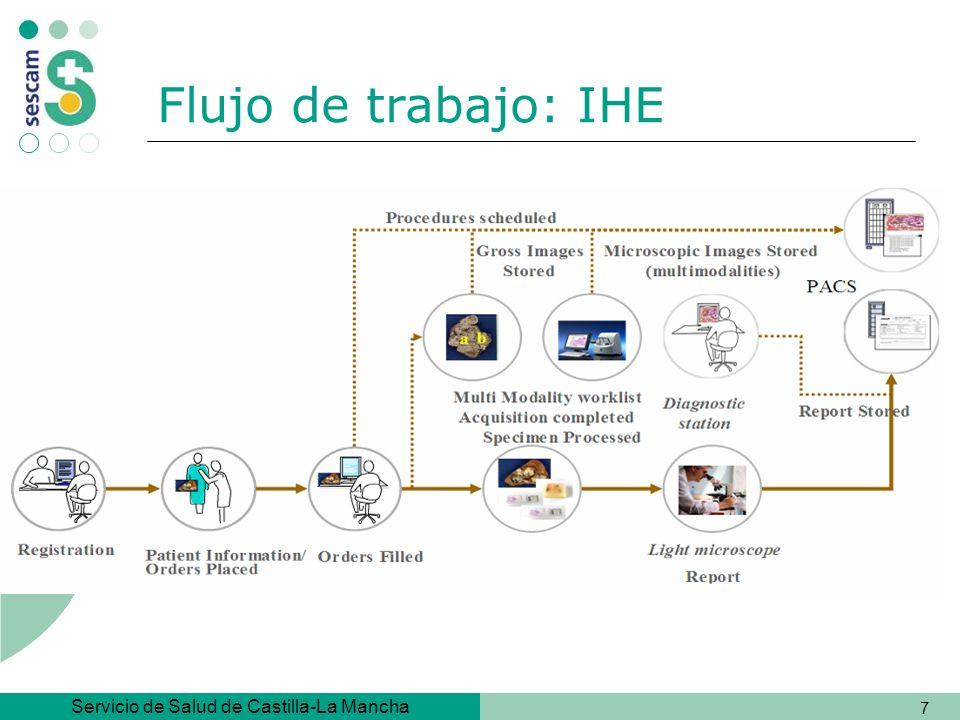 Servicio de Salud de Castilla-La Mancha 58 Subconjuntos: Patología