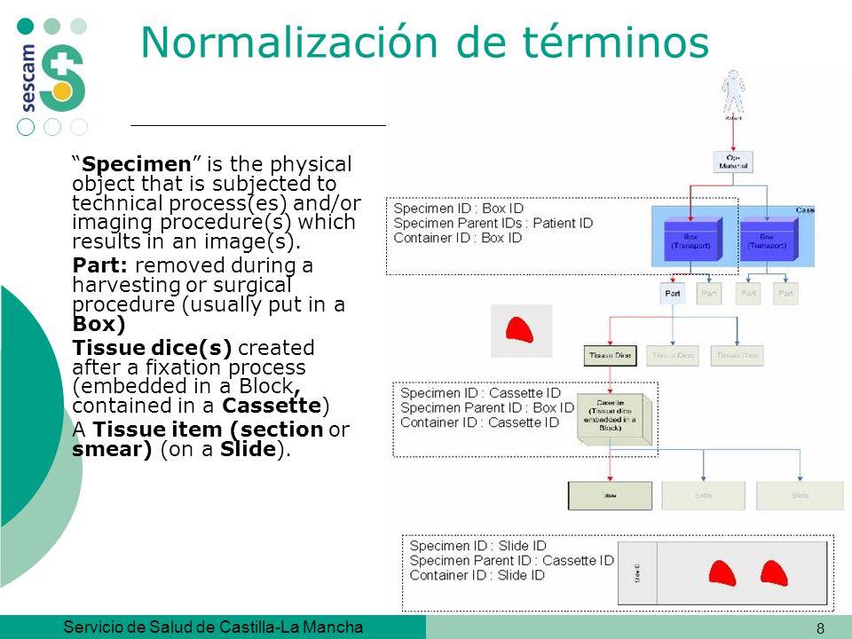 Servicio de Salud de Castilla-La Mancha 39 Qué incluye SNOMED-CT –Las tablas de los conceptos, descripciones y relaciones –Referencias cruzadas a CIE-9-MC -con fines epidemiológicos y/o estadísticos.