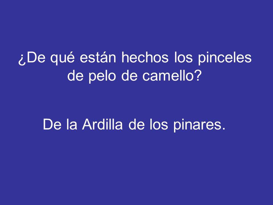 ¿De qué animal procede el nombre de nuestras Islas Canarias.