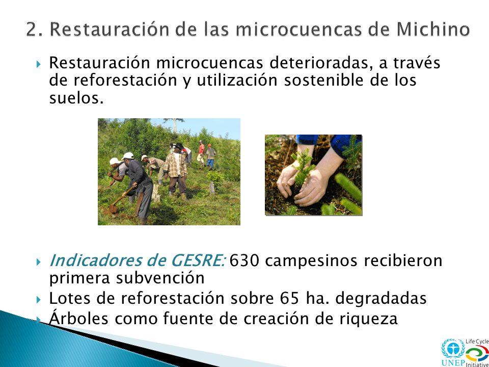 Restauración microcuencas deterioradas, a través de reforestación y utilización sostenible de los suelos. Indicadores de GESRE: 630 campesinos recibie
