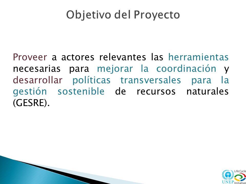 3 Establecimiento de redes de colaboración entre actores relevantes Promoción el desarrollo de proyectos piloto GESRE en ALC, que puedan definir buenas practicas replicables Identificación de oportunidades y lanzamiento de Planes de Acción GESRE