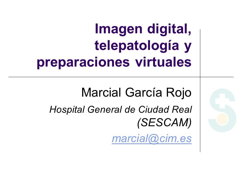Imagen digital, telepatología y preparaciones virtuales Marcial García Rojo Hospital General de Ciudad Real (SESCAM) marcial@cim.es
