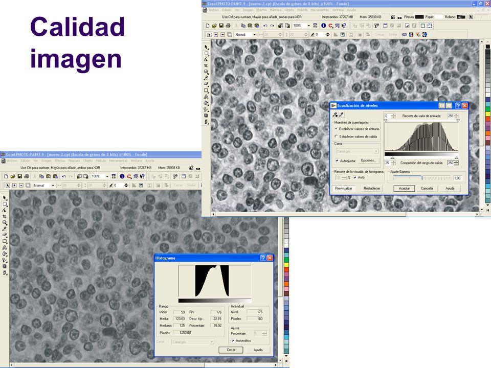 Soft Imaging System.Slide