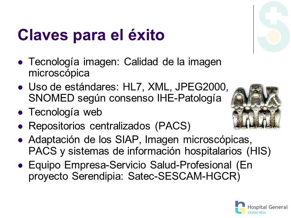 Claves para el éxito Tecnología imagen: Calidad de la imagen microscópica Uso de estándares: HL7, XML, JPEG2000, DICOM, SNOMED según consenso IHE-Pato