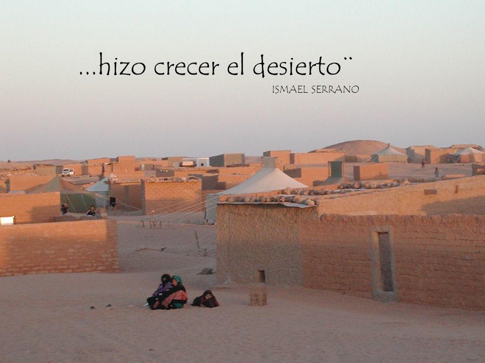 ¨Hace mucho tiempo los españoles abandonaron la rica tierra del Sahara Occidental y a su pueblo a su suerte.....