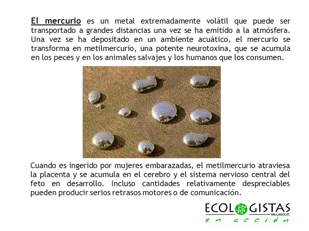 El mercurio es un metal extremadamente volátil que puede ser transportado a grandes distancias una vez se ha emitido a la atmósfera. Una vez se ha dep