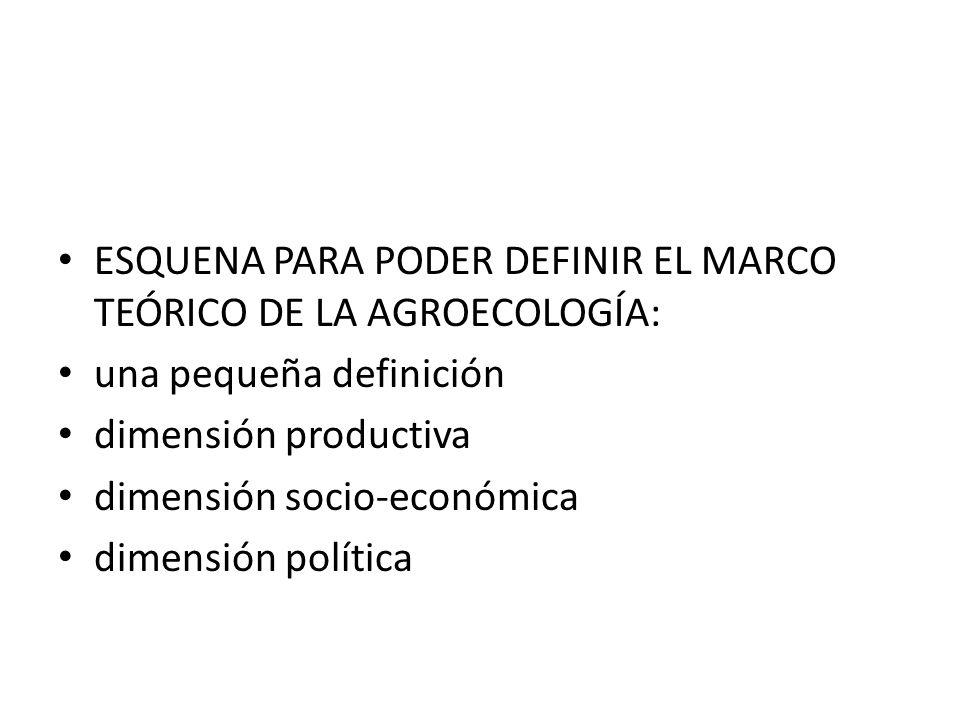 ESQUENA PARA PODER DEFINIR EL MARCO TEÓRICO DE LA AGROECOLOGÍA: una pequeña definición dimensión productiva dimensión socio-económica dimensión política